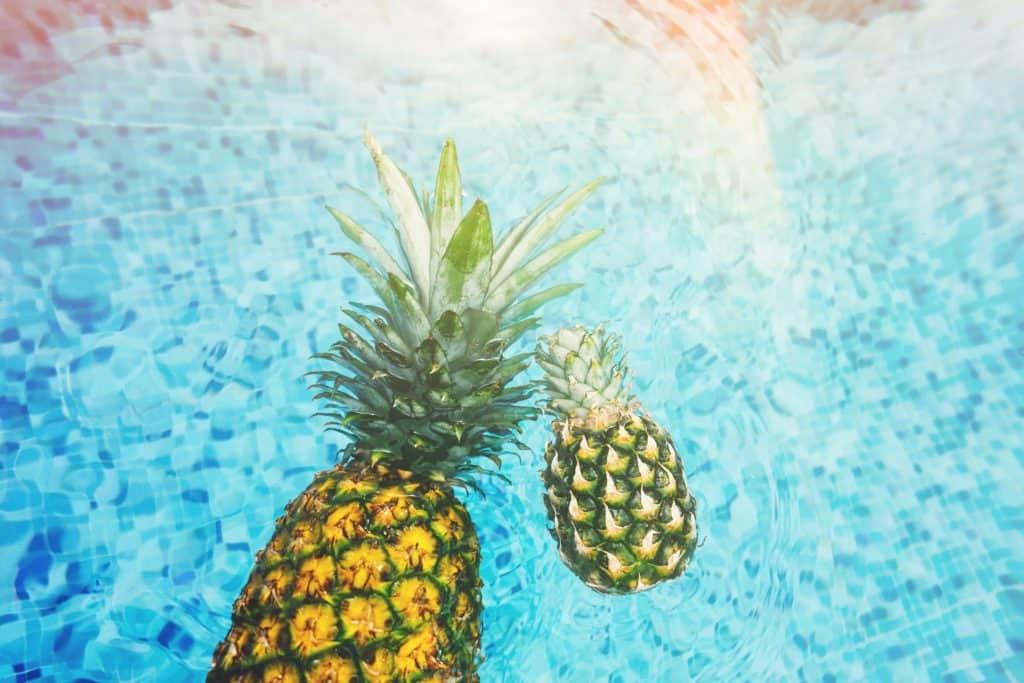 Pineapple Creed Aventus